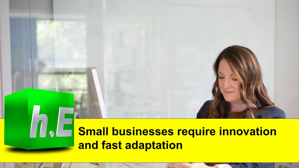Small businesses require innovation and fast adaptation