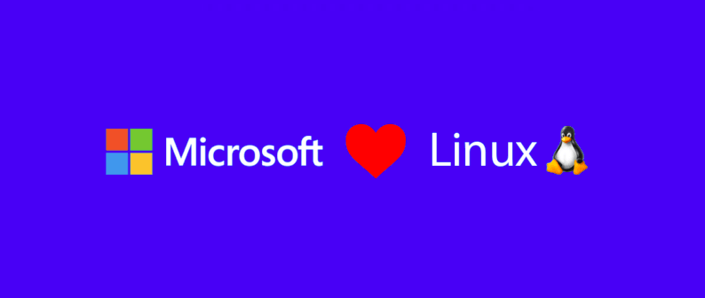 Windows 10 with Linux kernel
