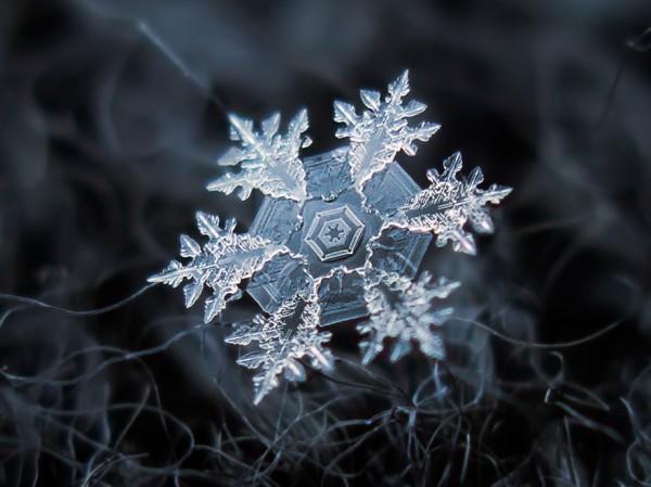 macro-photography-snowflakes-alexey-kljatov-18