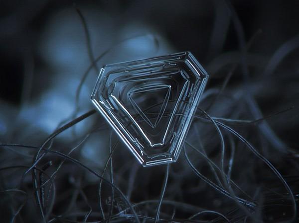 macro-photography-snowflakes-alexey-kljatov-3