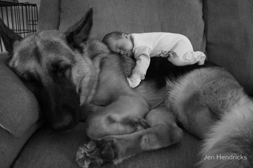 bebes e cachorros (17)