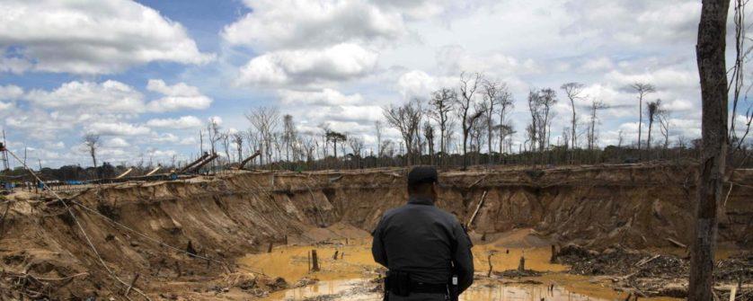 vamos sobreviver a sexta extincao em massa