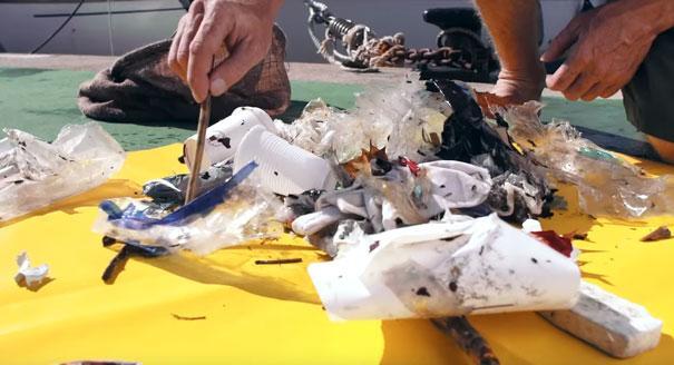 può pulire gli oceani (1)