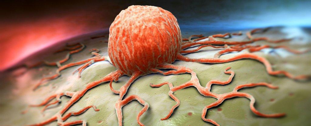 https://i0.wp.com/hypescience.com/wp-content/uploads/2016/01/celulas-cancerigenas-e-quimio-mais-eficiente.jpg