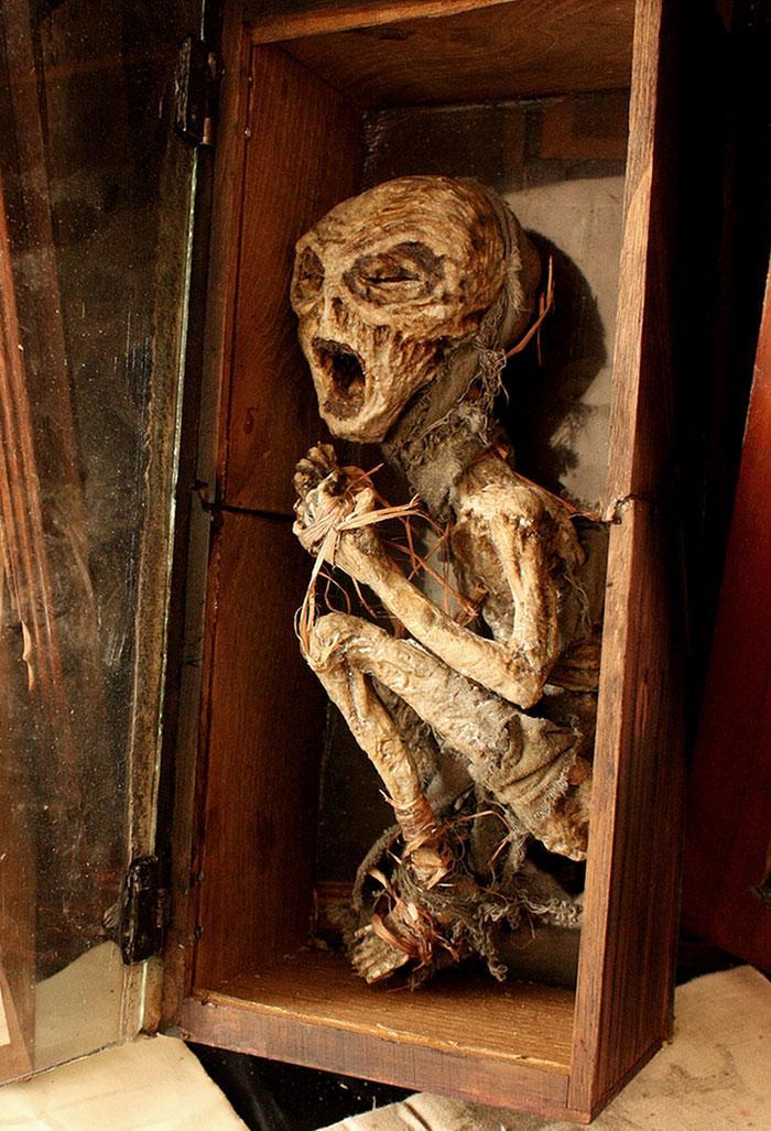 esqueletos criaturas fantasticas esculturas alex cf (6)