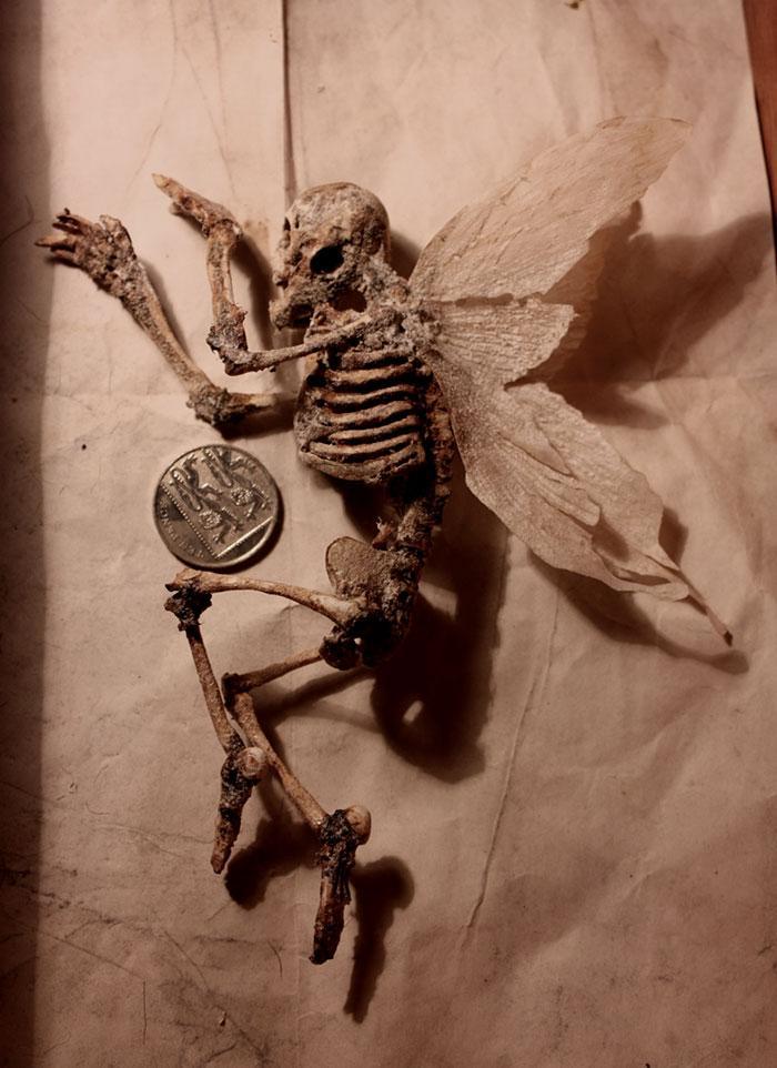 esqueletos criaturas fantasticas esculturas alex cf (8)