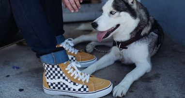 Vans-Checkerboard-Collection-