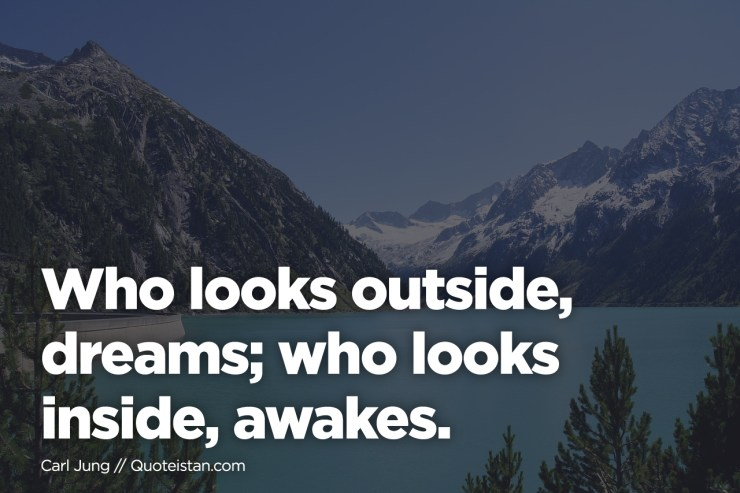 Picture: Who looks outside, dreams; who looks inside, awakes.