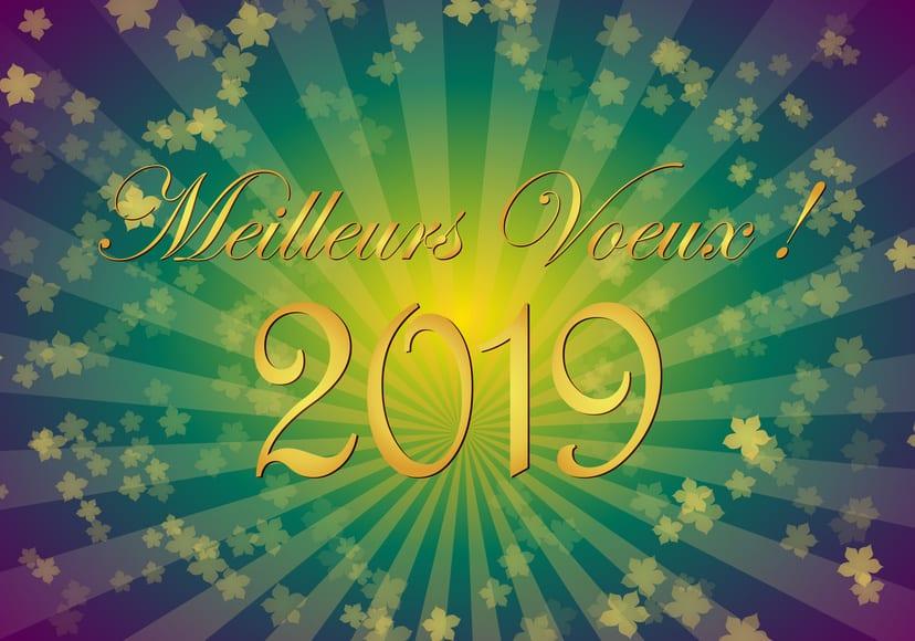 Belle, harmonieuse et heureuse année 2019 - Shaff Ben Amar Hypnose Bourg-La-Reine