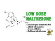 How Low Dose Naltrexone Works