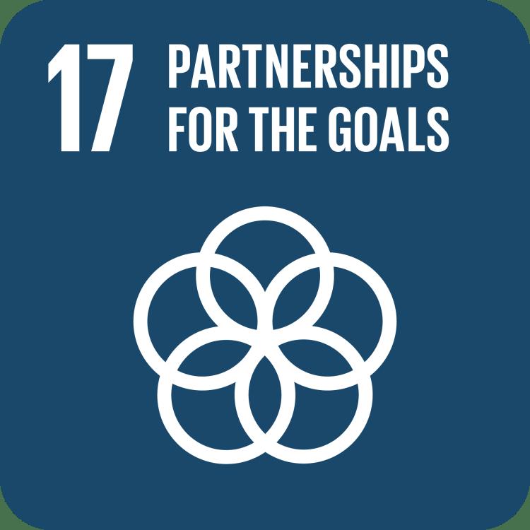 UN SDG Goal 17