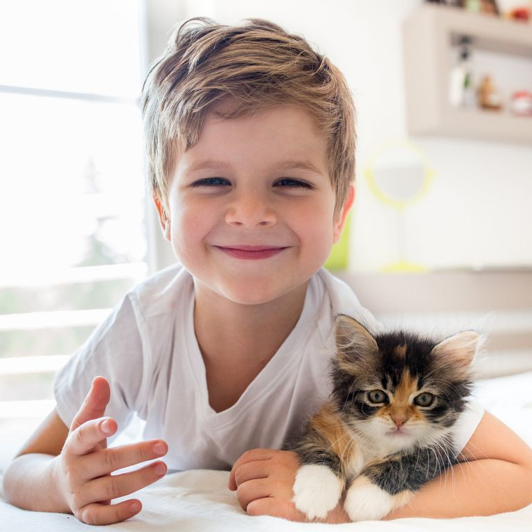 image result of cat with kid