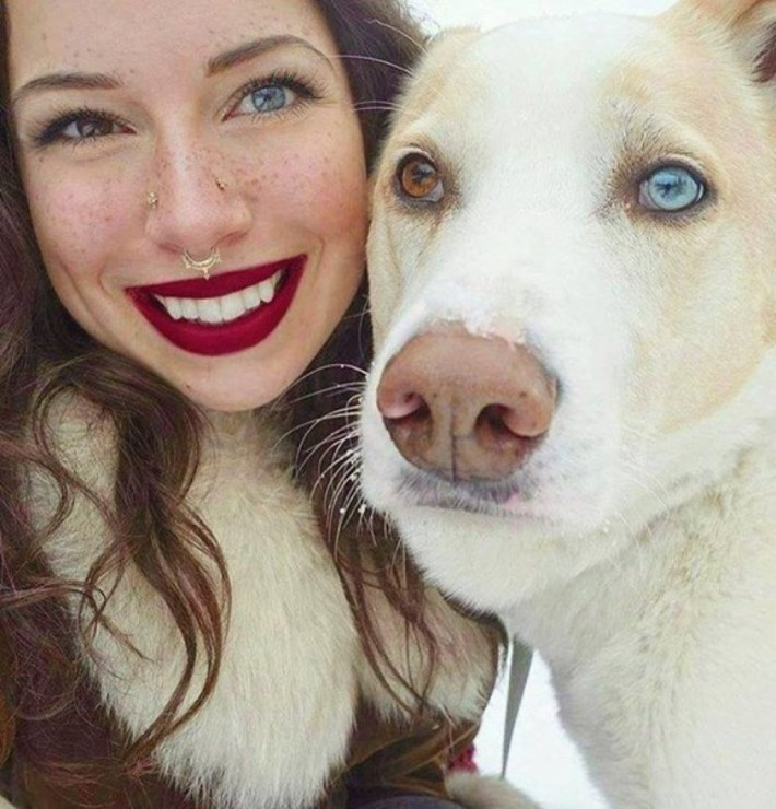 image-result-of-dog-with-two-color-eyes