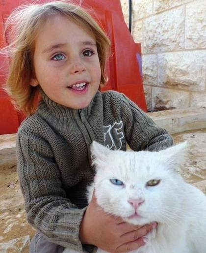 image-result-of-cat-with-kid