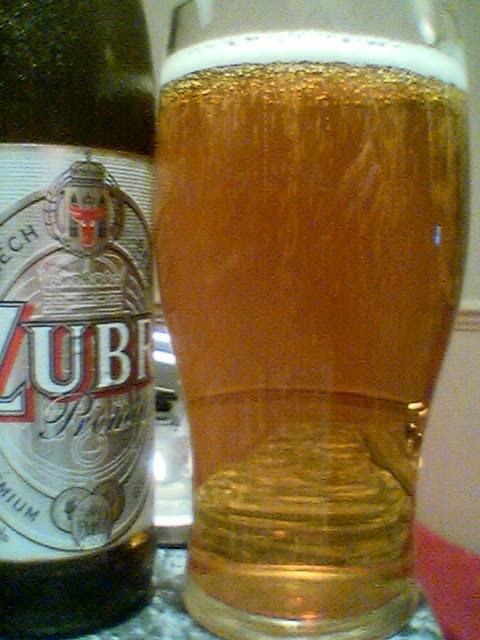 Zubr Premium poured into a glass