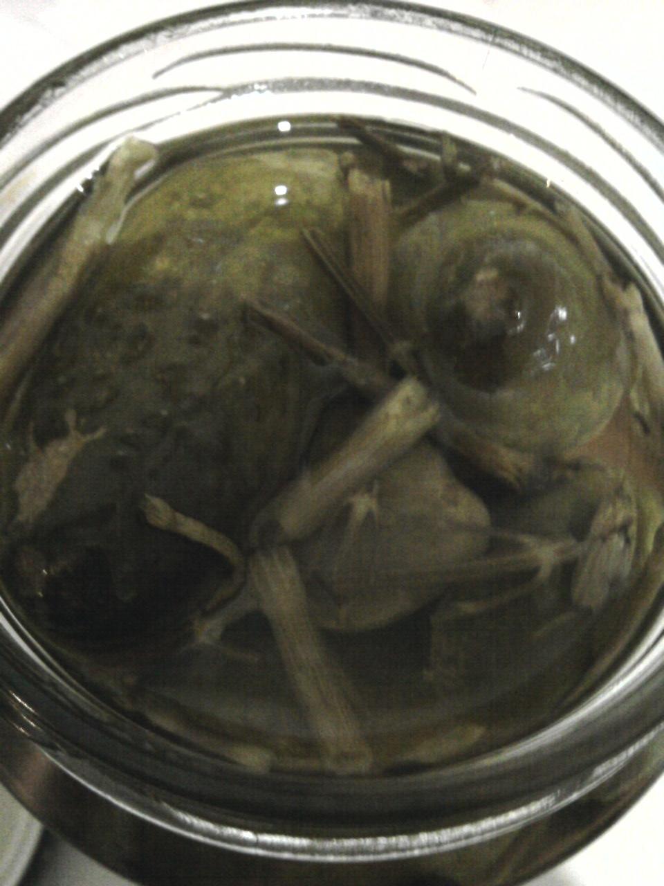 Rivona Rokiškio Marinuoti Agurkai Pickled Cucumbers open jar