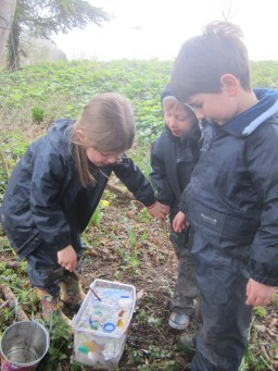 Reception Forest School (13)