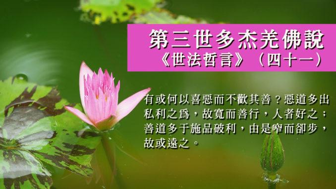 """第三世多杰羌佛说""""世法哲言""""(四十一)"""