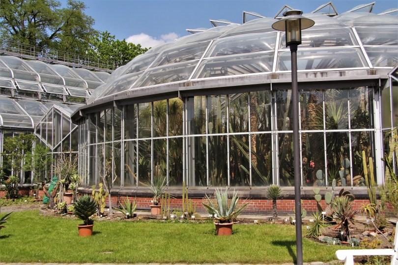 serres jardin botanique berlin