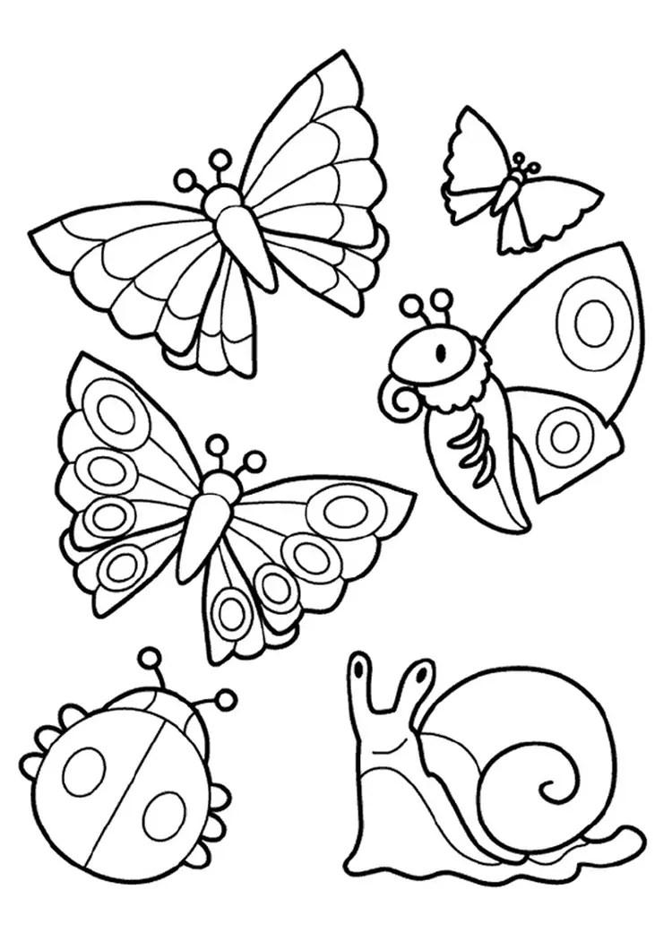Les insectes font le printemps : 12 coloriages pour