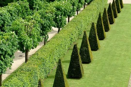 Jardins du Chteau de Meudon HautsdeSeine  Lanne Andr Le Ntre en 12 jardins  Linternaute