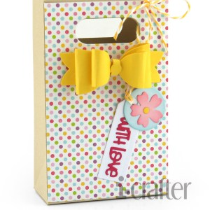 Bag With Bow