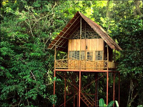 crazy-vacation-spots-treehouse