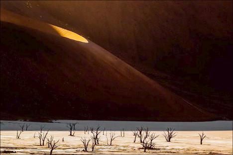 Deadvlei Desert Namibia
