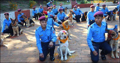Dogfestival Nepal 4