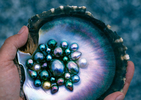 Top 10 Islands World Tahiti black pearls