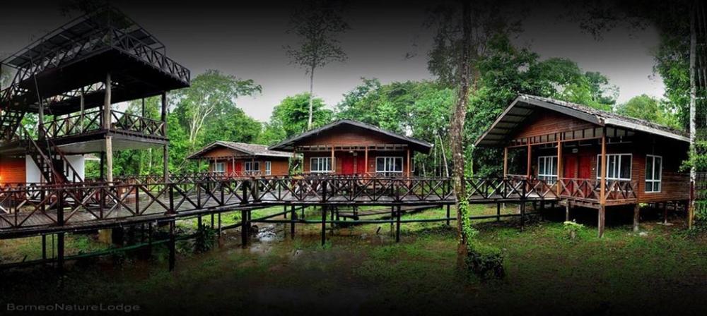 Borneo Nature Lodge, Sabah