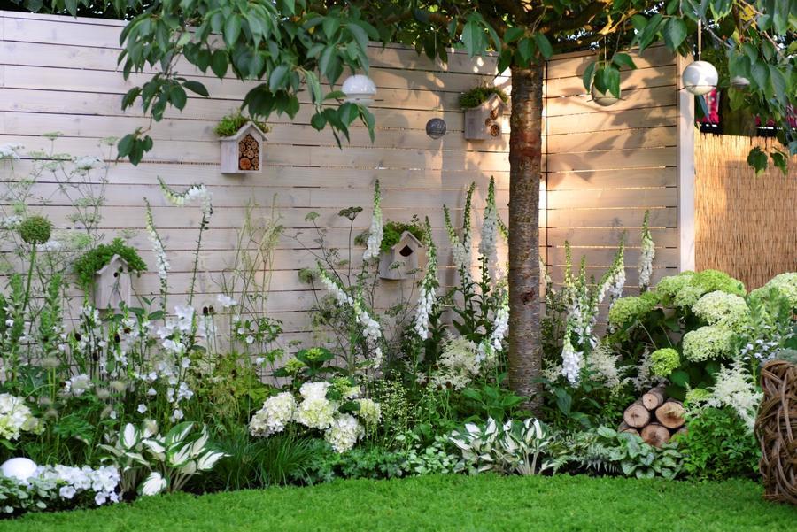 un jardin de fleurs blanches detente
