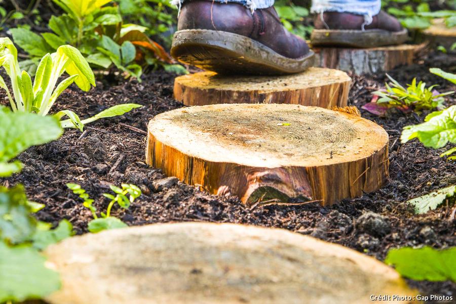 tronc et rondin de bois diy