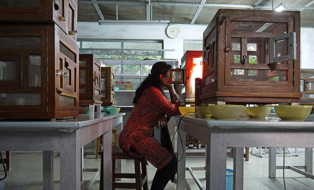 Observing the observer: a scientist at IISc in front of a ›black box‹