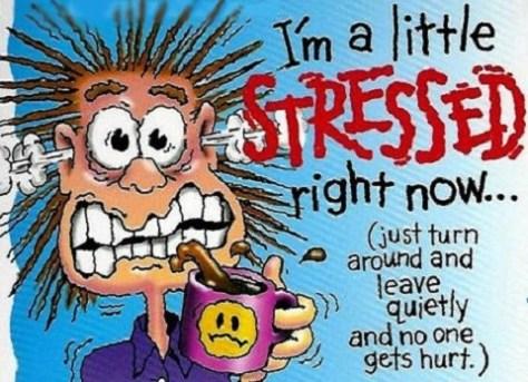 stressad 480