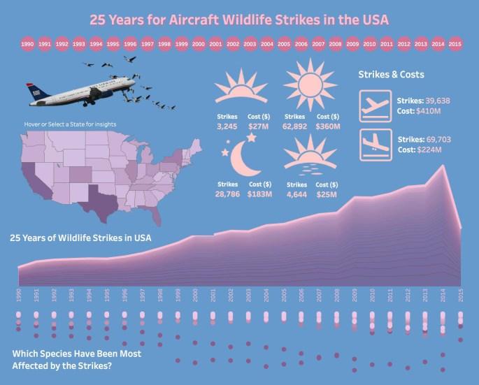 MOMWeek47 - Aircraft Wildlife Strikes