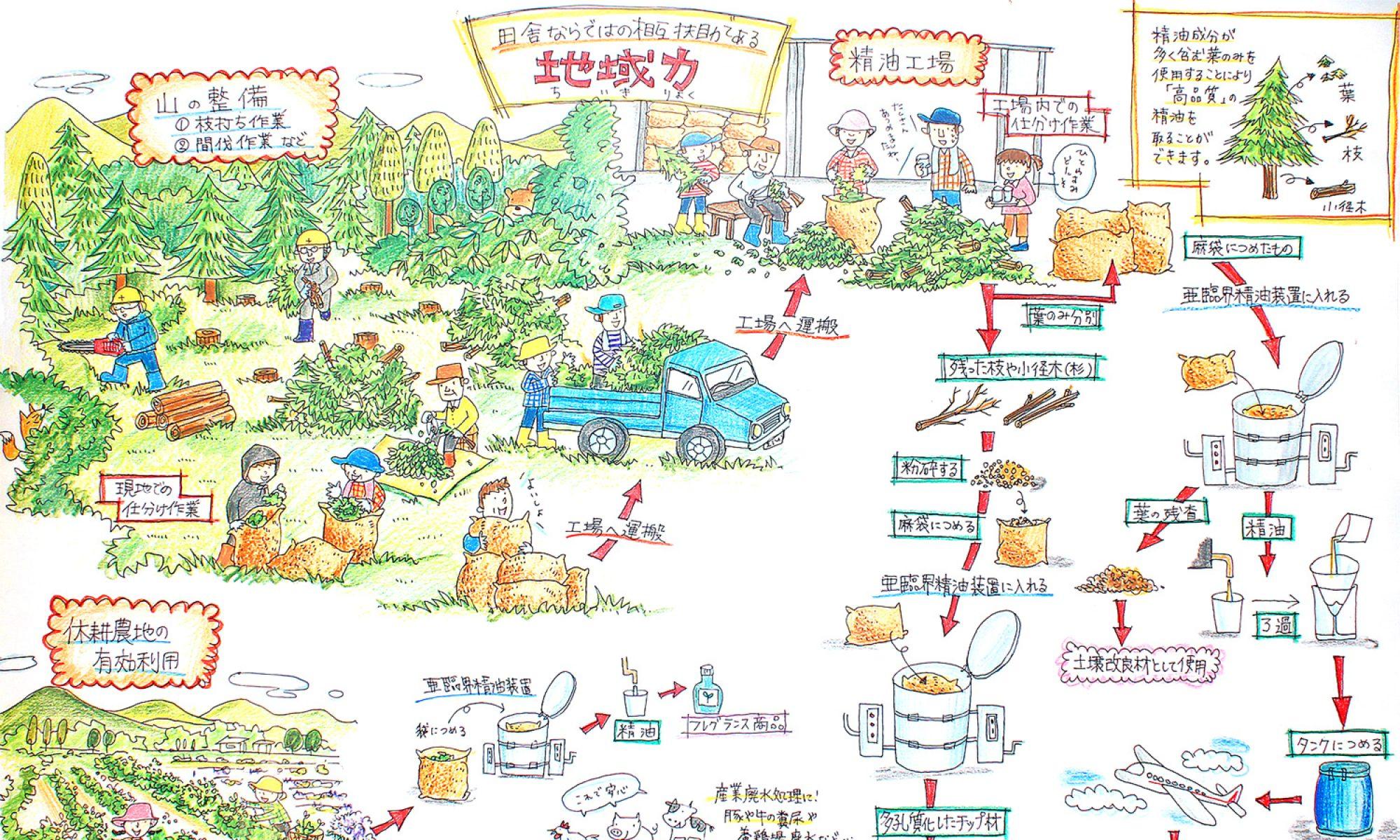 岐阜県の間伐材を有効活用しています