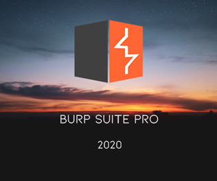 Burp Suite Professional 2020