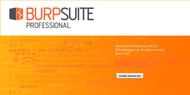 Burp Suite Professional 2020.6 Build 3105