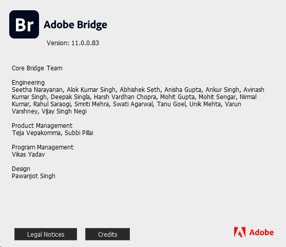 Adobe Bridge 2021 v11.0.0.83