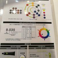 イノアオイルグロスカラー・カラーチャート、パレットに新色が~