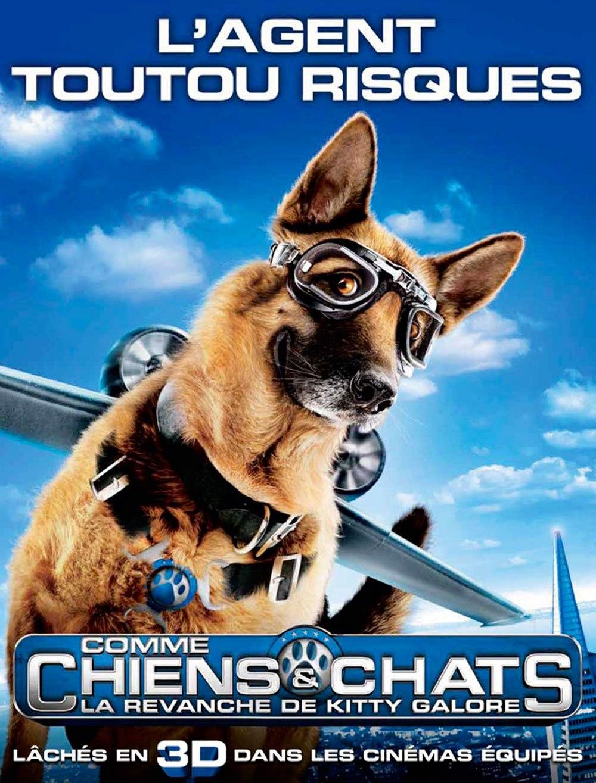 Comme Chien Et Chat 2 : comme, chien, Comme, Chiens, Chats, Revanche, MOMES.net