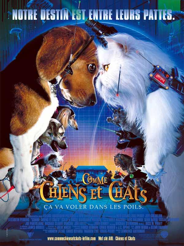 Comme Chien Et Chat 2 : comme, chien, Comme, Chiens, Chats, MOMES.net