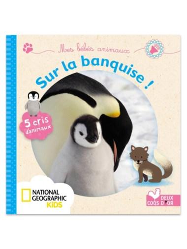 Les Animaux De La Banquise : animaux, banquise, Bébés, Animaux, Banquise, MOMES.net