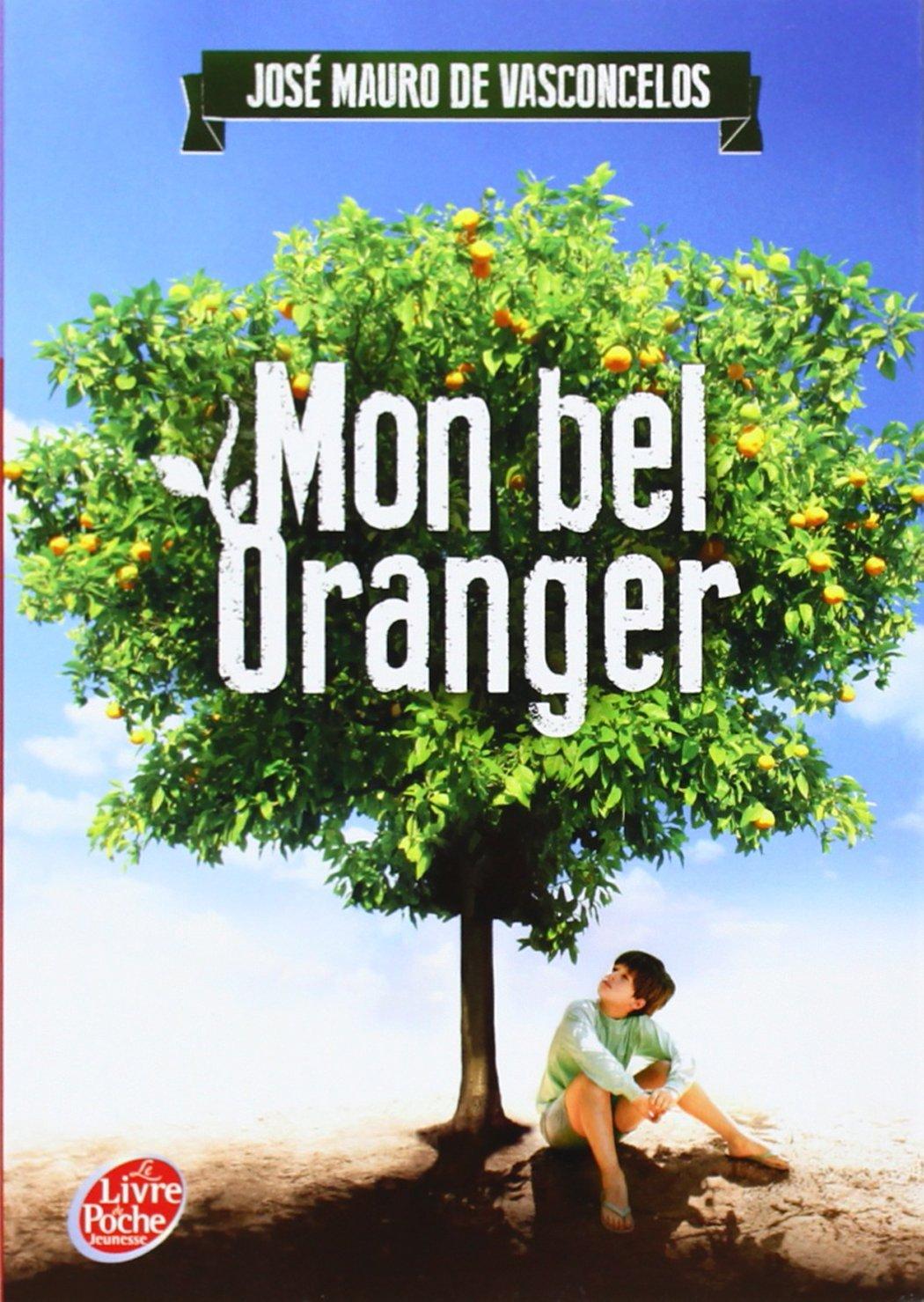 Mon Bel Oranger Questionnaire Reponse : oranger, questionnaire, reponse, Oranger, MOMES.net