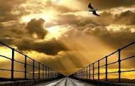 'সৎকর্মপরায়ণতা' সম্পর্কিত কুরআনের আয়াত