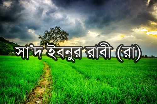 সা'দ ইবনুর রাবী' (রা)