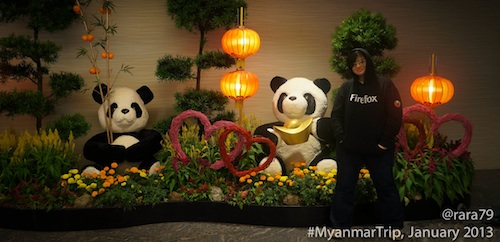 And these two cute pandas are celebrating the Chinese New Year :p