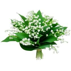 Bouquet de Muguet du 1er mai | Livraison en 4 h | 123fleurs