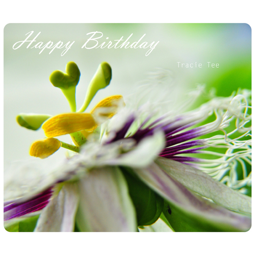 Have A Wonderful Birthday! Free Flowers ECards Greeting